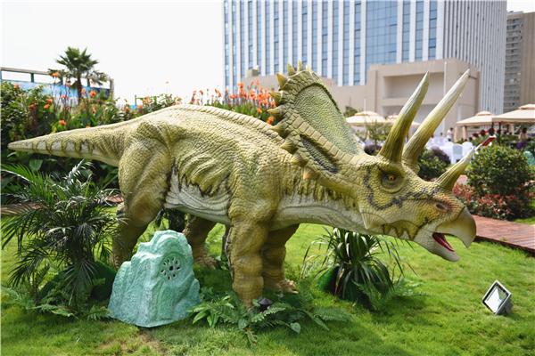 盯着你看的恐龙 图纸
